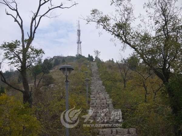 峄城坛山上的信号塔管理员:爬60层楼来上班_枣庄新闻
