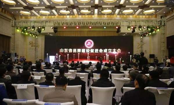 台儿庄古城当选山东省品牌建设促进会常务理事单位